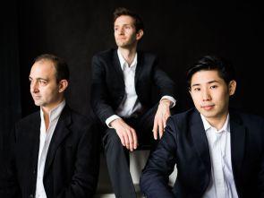 Beethoven Trio Bonn, Münster Klassik